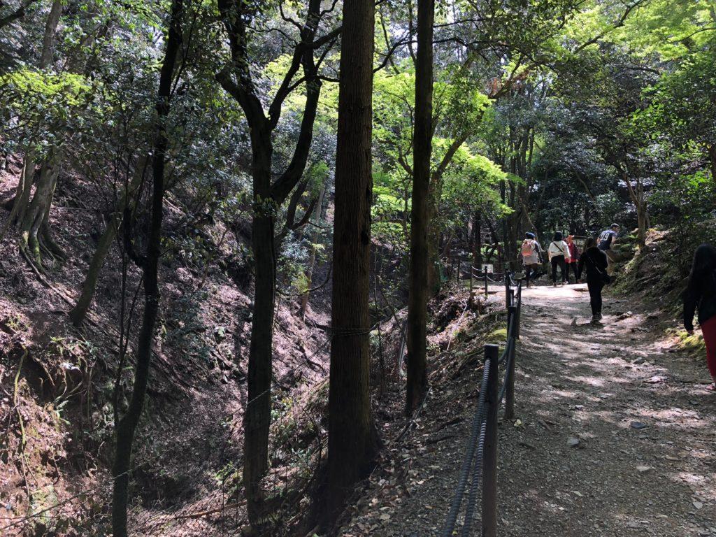 ▲山道も整備されており登りやすい