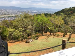 ▲嵐山α'山頂からの眺め